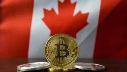 Canada's Bull Bitcoin Preps for Halving, Coronavirus Economic Crisis
