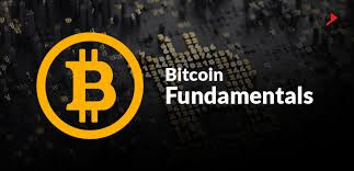 Fundamentals That Will Spark The Next Bitcoin Rally