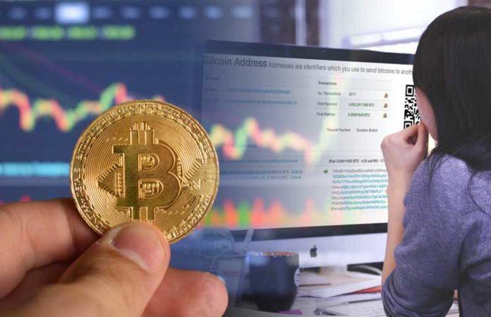 10 Tips to Keep Your Crypto Portfolio Profitable During a Crisis