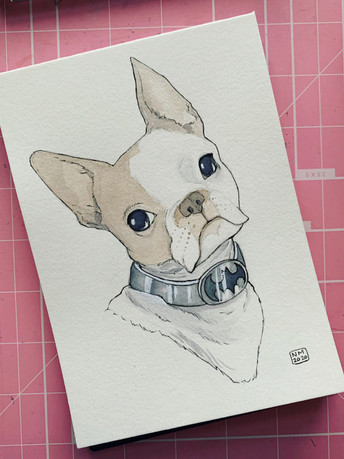 Bacon the dog (Commission), 2020