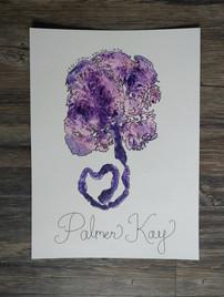 Palmer Kay.jpg