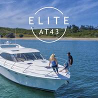 Elite AT43 Branding