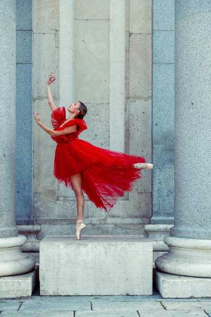 #balance #poise #dedication #elegance #precision #fluidity