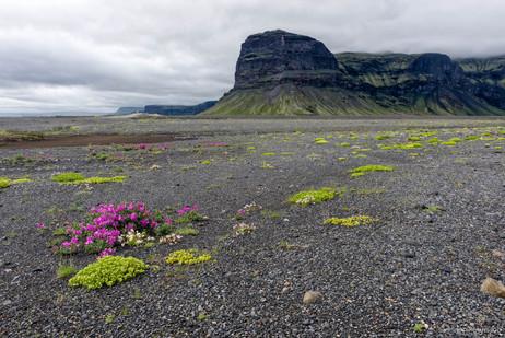 Mt. Lomagnupur, Southeast Iceland