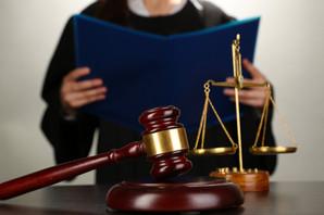 Решение суда по иску Партнерства к Колесову ВВ