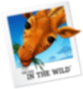 vbs2019Giraffe-281x300.png