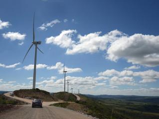 Ya puede ser accionista en parque eólico de UTE con mínimo de US$ 100