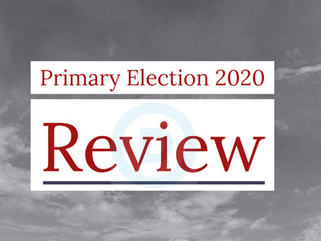 2020 Primary Election Review