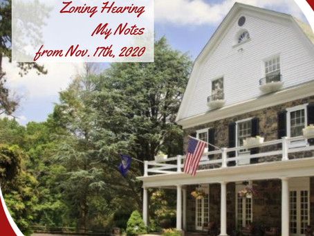 Hamanassett Estate Zoning Hearing Nov. 17th, 2020