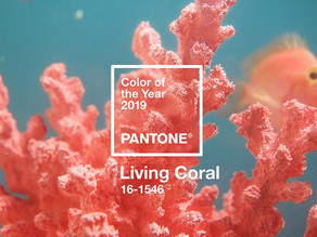 """Седмична доза вдъхновение: Pantone каза: """"Корал!"""""""