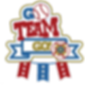 VFW-SoftballTeam-Go.png