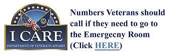 Icare-VA-EmergencyCare-SM.jpg