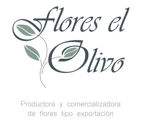 FLORES EL OLIVO.JPG