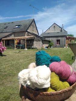 laine et ferme1