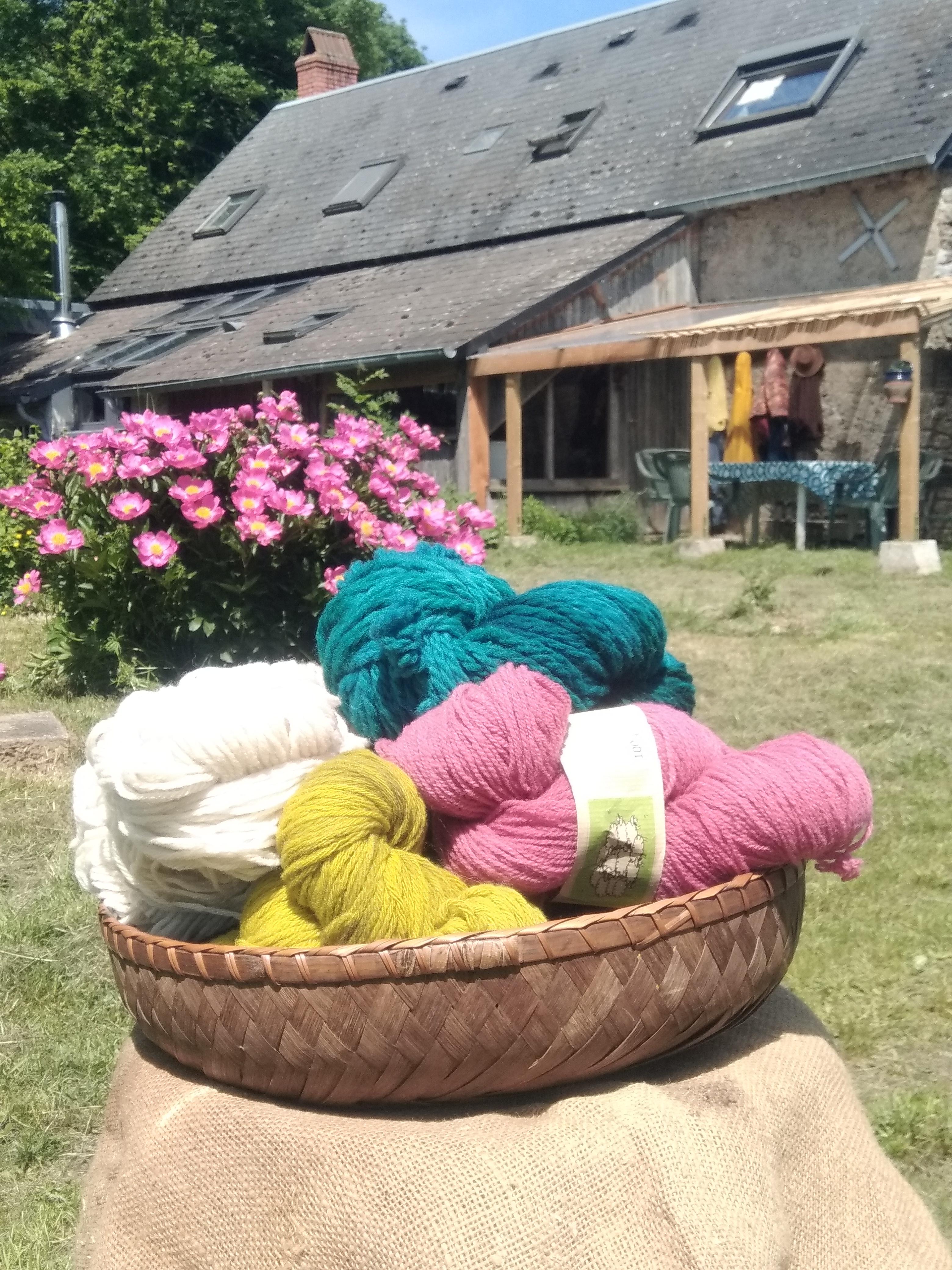 laine et ferme2