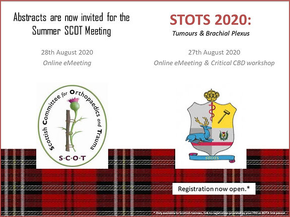 Summer SCOT and STOTS meeting