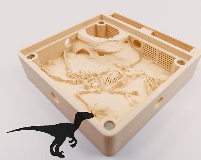 Hybrid Nest type Raptor