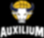 Auxilium Basket