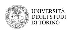 Università Studi d Torino_logo