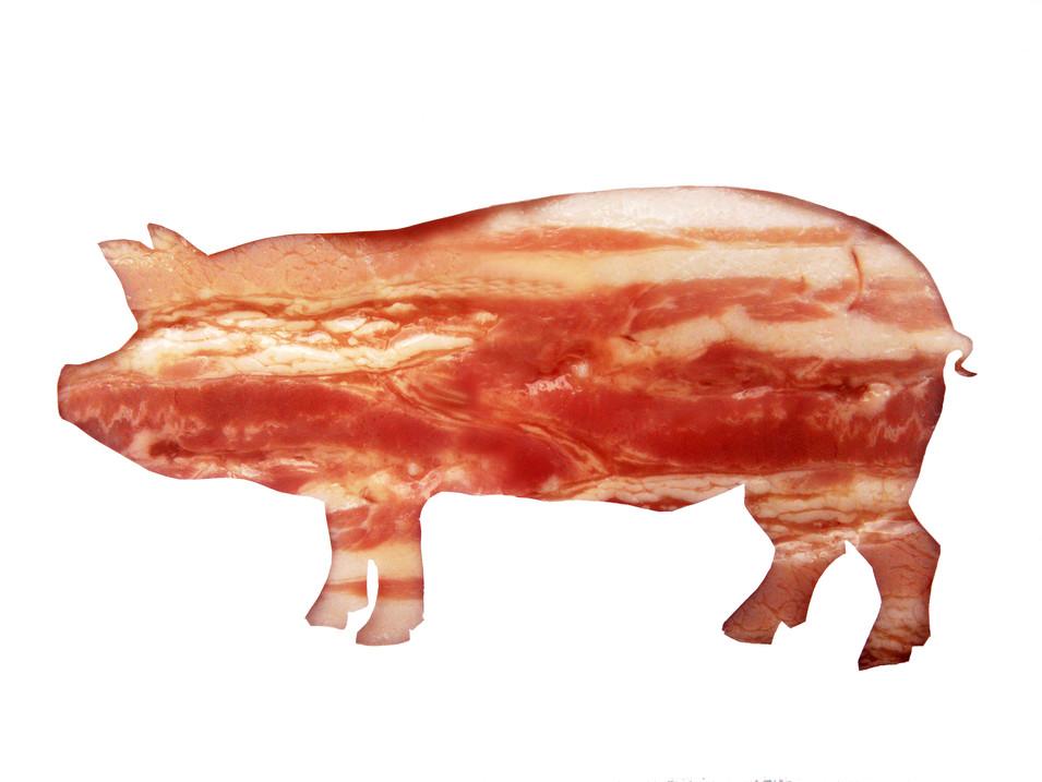 Maiale/Bacon
