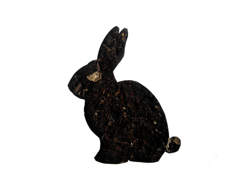 Coniglio/Terra