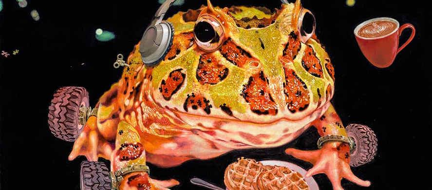 Life Gladiator -  Modern Frog