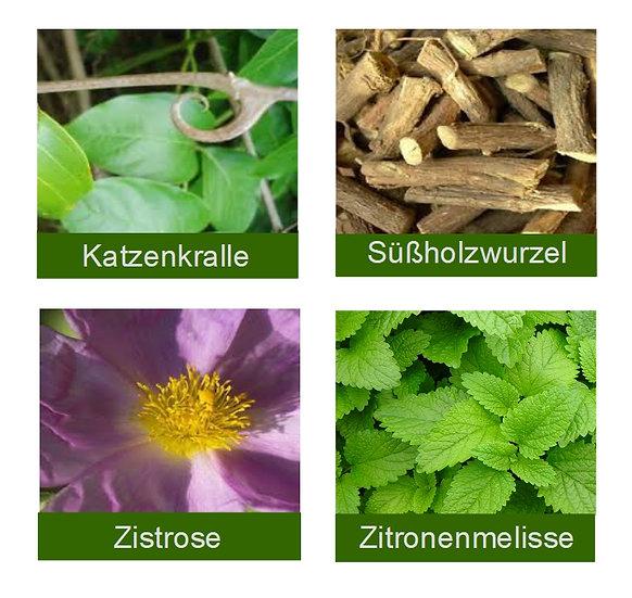 Teemischung Süßholz, Katzenkralle, Cistus, Melisse