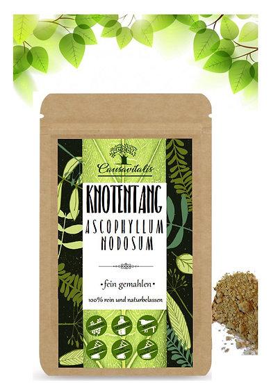 Kelp Algen Ascophyllum nodosum Braunalgen Jod fein gemahlen aus Frankreich 150g