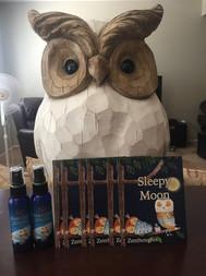 Owl and Sleepy Moon.JPG