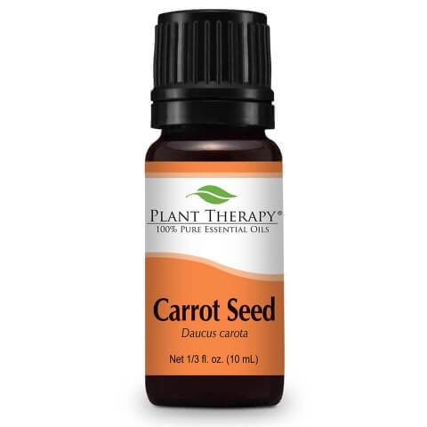 Carrot Seed Essential Oil, 10ml