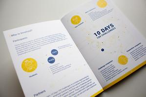 Handbook 10 Days 100 Challenges