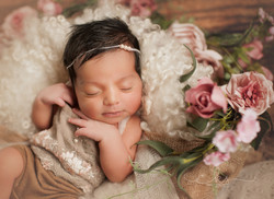 newborn photographer west bridgford