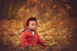 autumn shoot nottingham