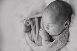 black and white newborn photo