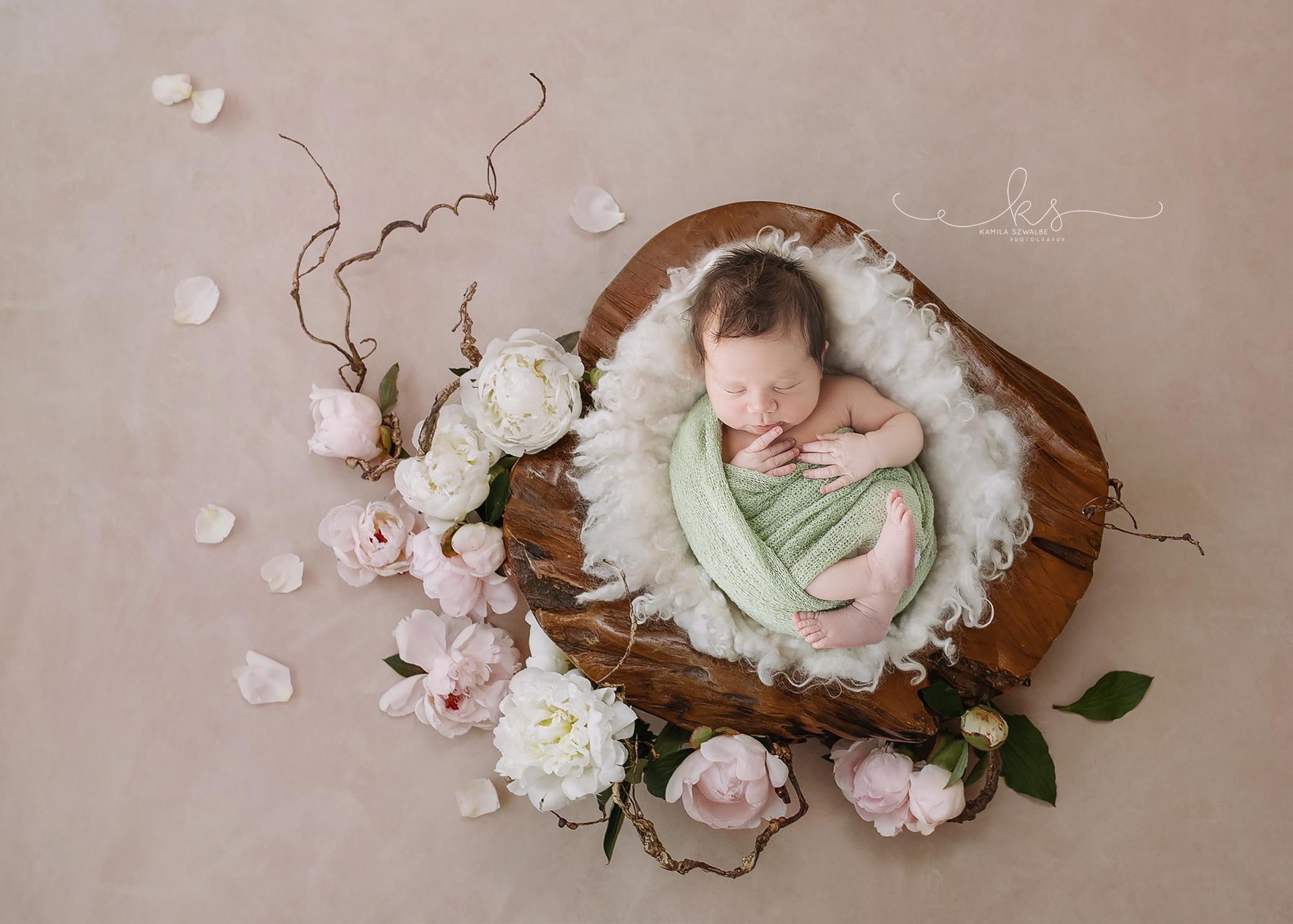 newborn photography bingham