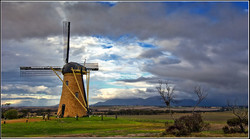The Lily Windmill - Stirling Ranges