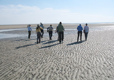 Over 50's Easi Pace Walkers