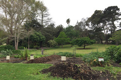 Gardens & Parks of Albany