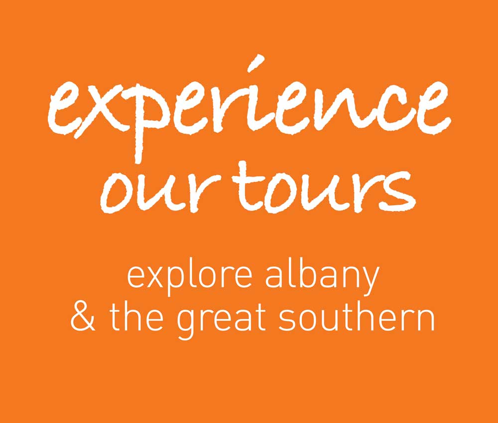 Let the Locals show you Albany!