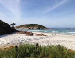 Mutton Bird Beach