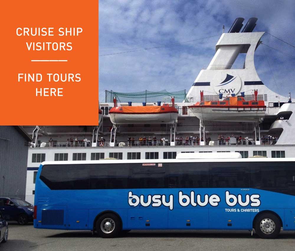 Cruise Ship Visitor Tours