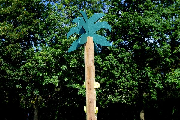 cimbing-trees-3
