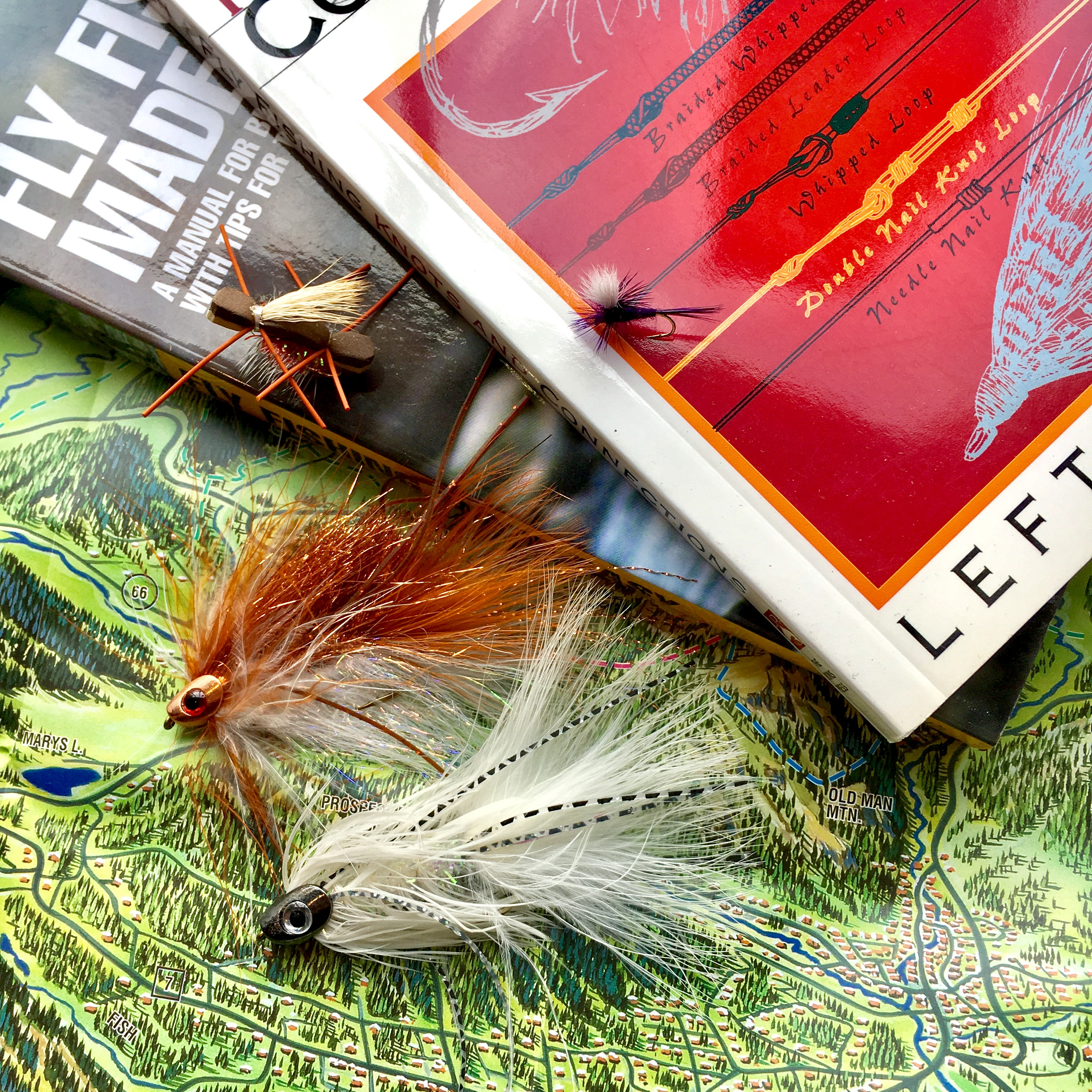 streamer flies and guide books