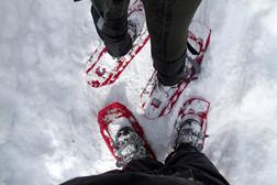 170115-SNOWSHOE-KEVINJBEATY-36.jpg