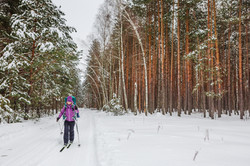 cross country skiing in fresh snow