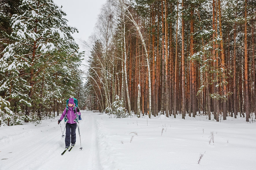 cross country skiing on fresh snow