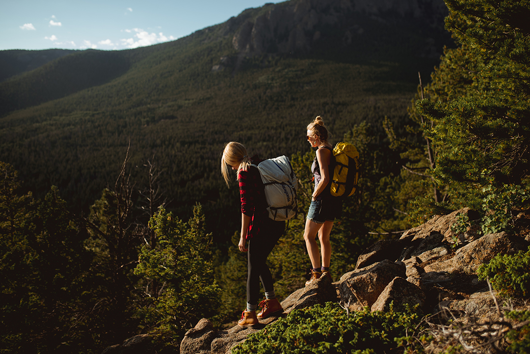 hikers overlook the forest