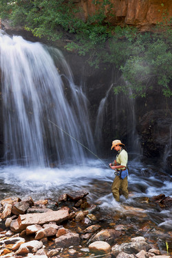 waterfall fishing