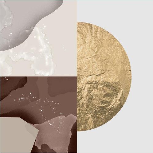 Foil (Brown) Framed Canvas