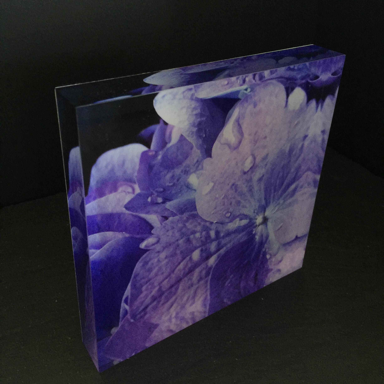 Plexiglass Prints